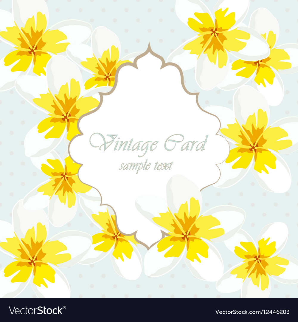 Vintage Card With Yellow Flowers Royalty Free Vector Image