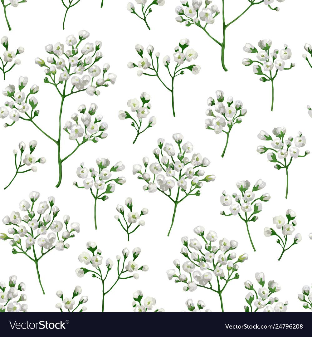 Seamless pattern with gypsophila flowers in
