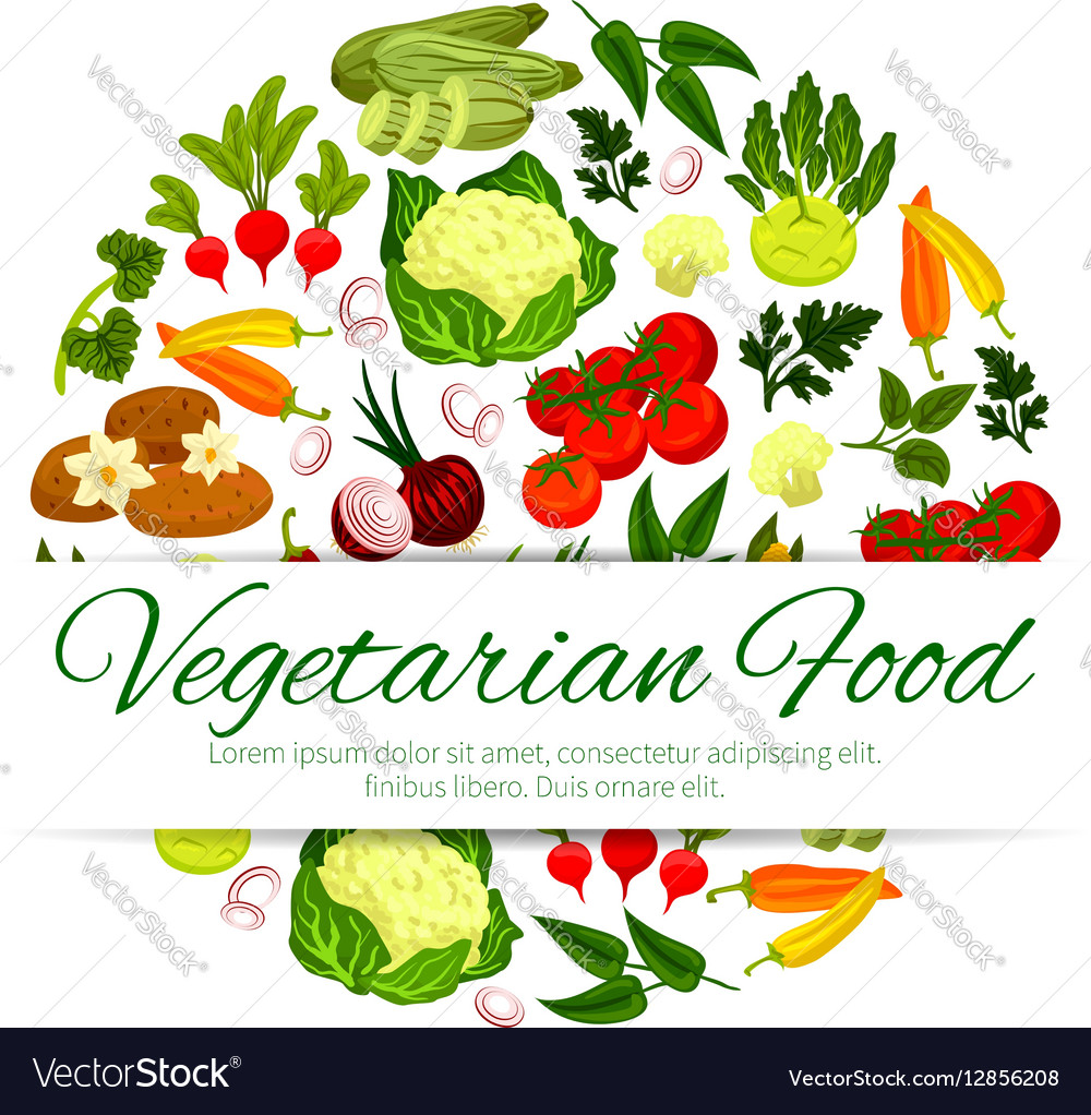 Vegan Or Vegetarian Vegetable Food Banner Vector Image