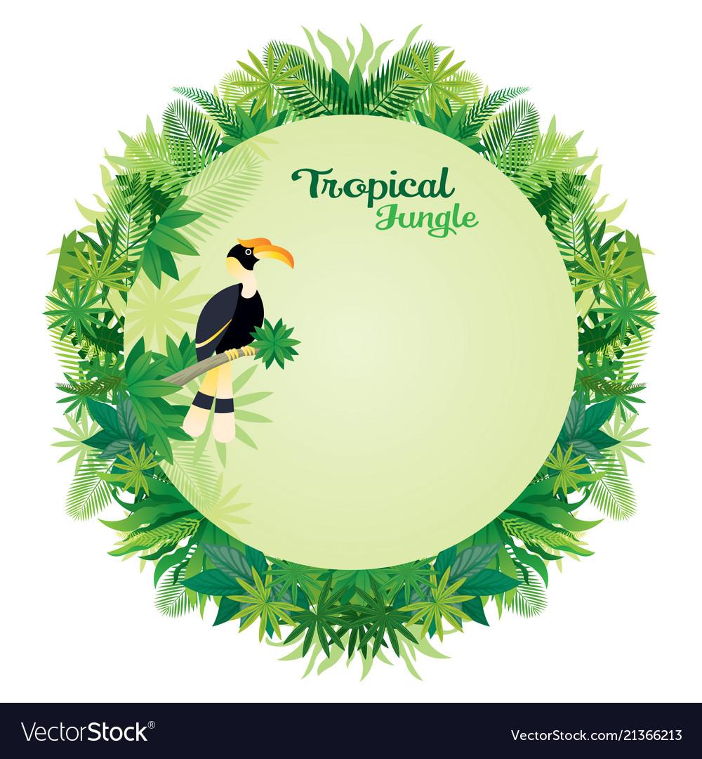 Hornbill bird with tropical jungle round frame