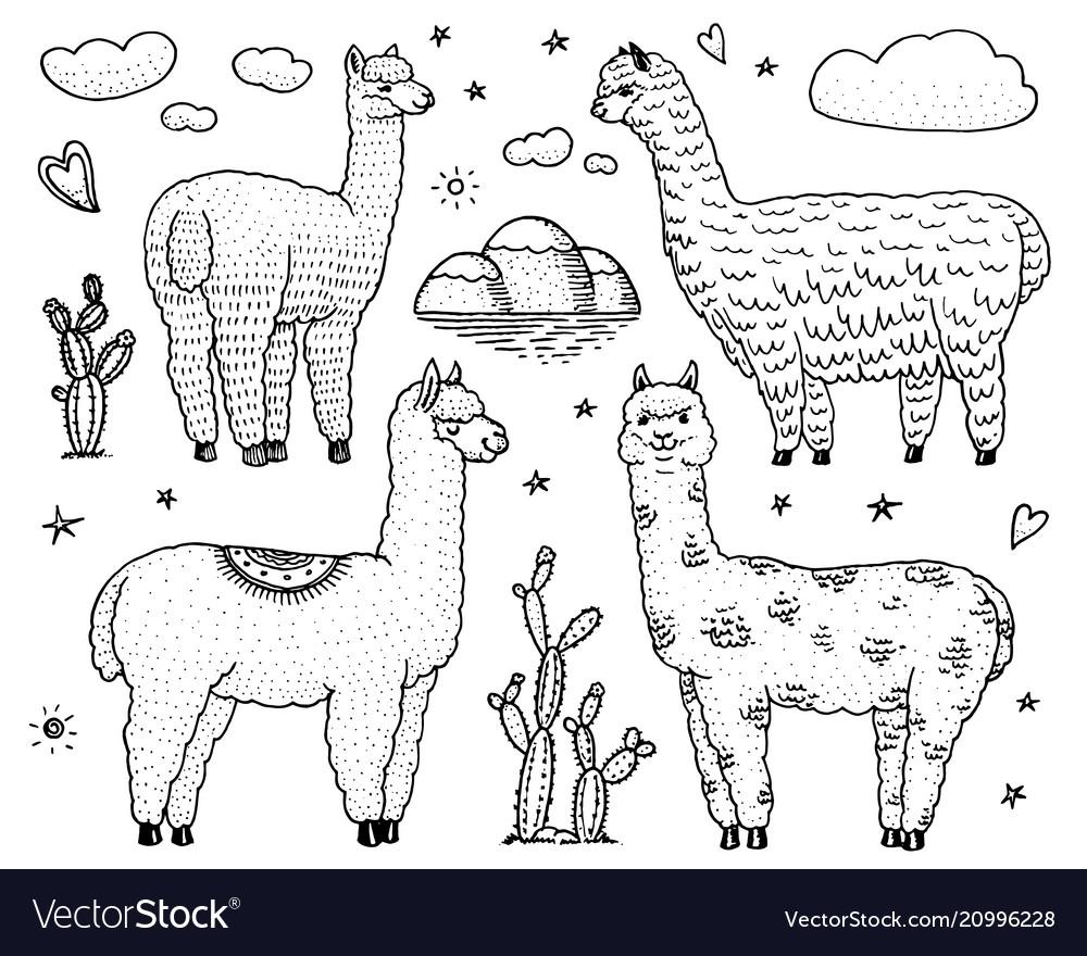 Set of cute alpaca llamas or wild guanaco on the
