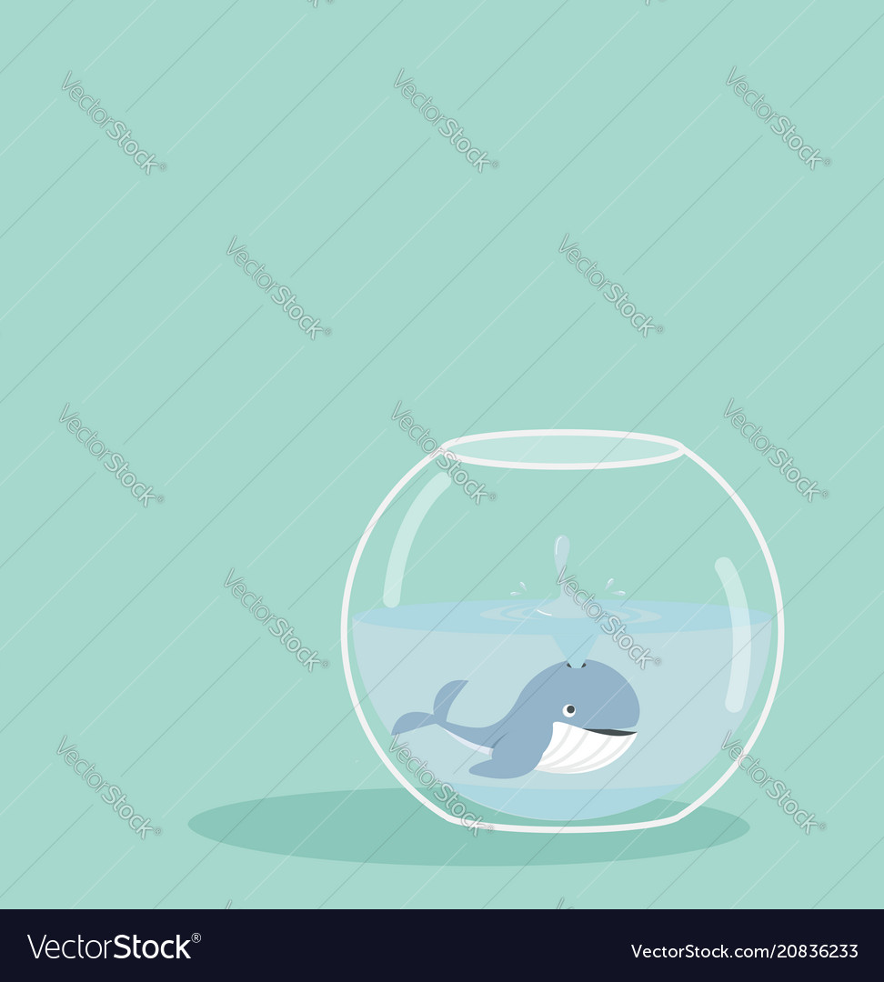 Whale spray of fishbowl vector image