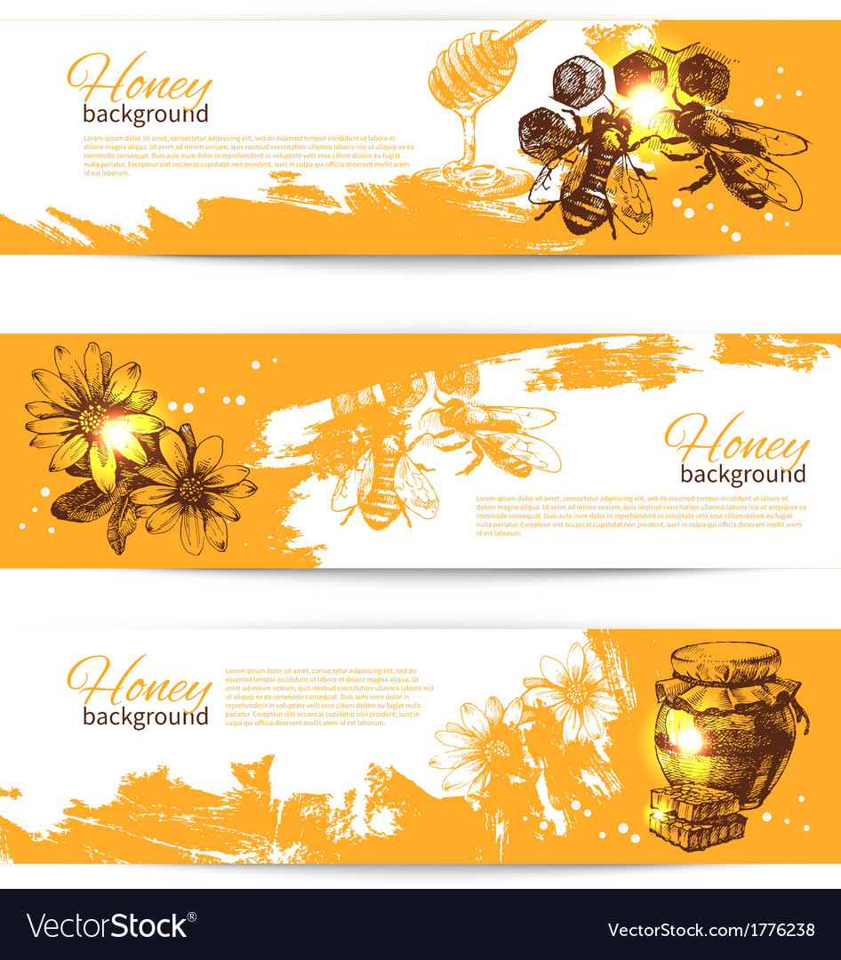 Set of honey banners with hand drawn sketch
