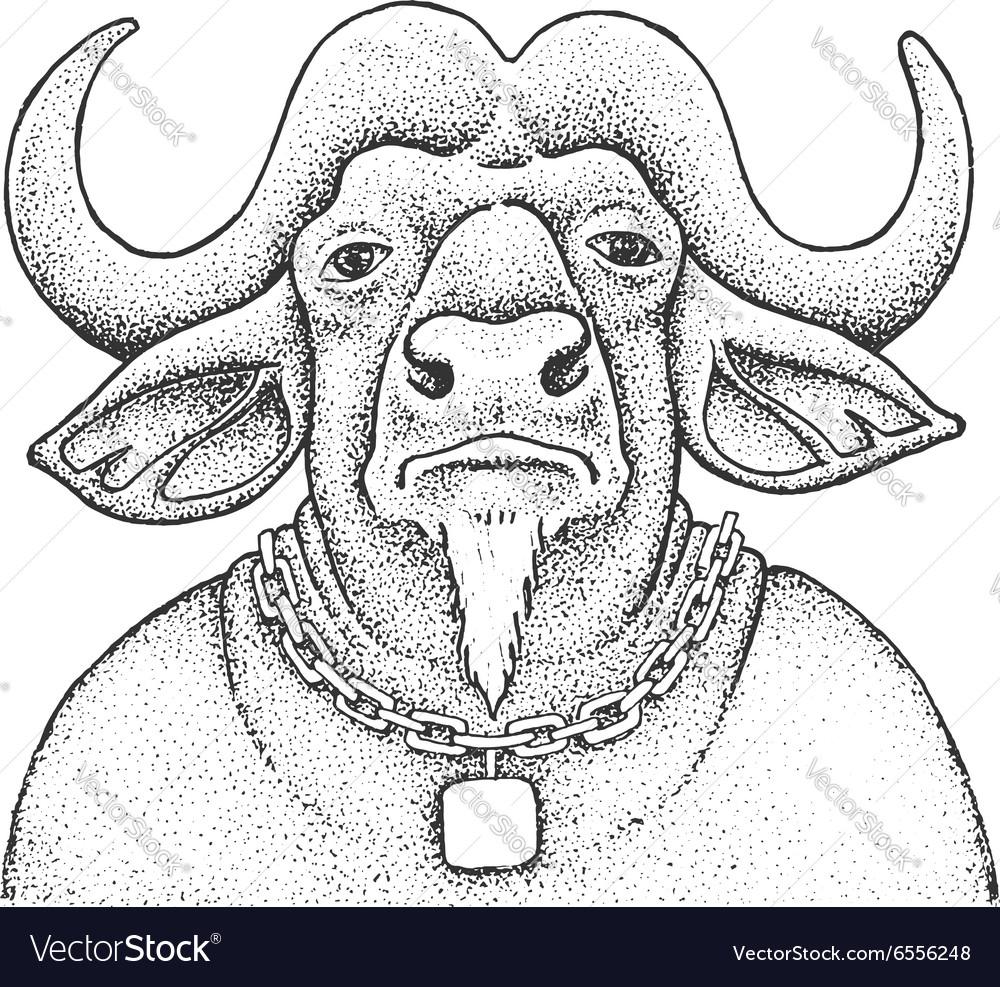 African Buffalo Engraving