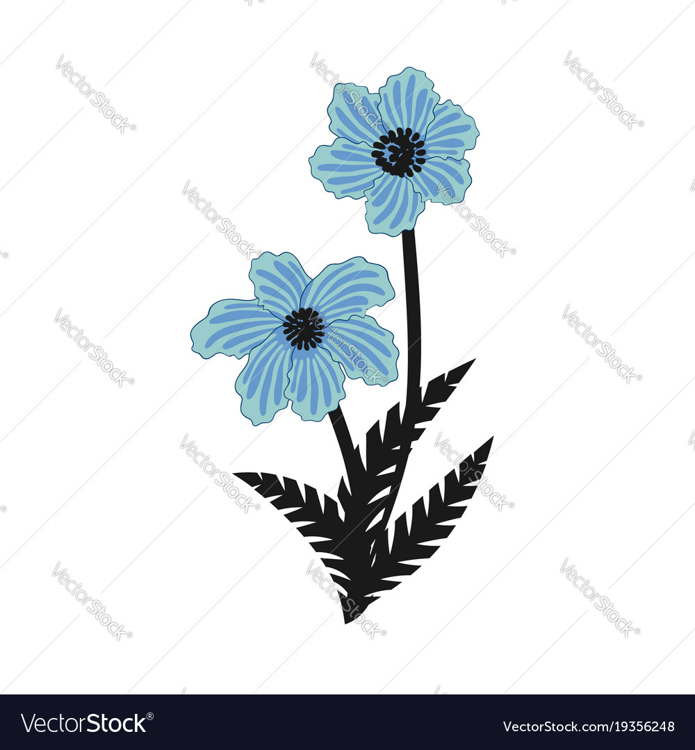 Wild Blue Flowers Bouquet Royalty Free Vector Image