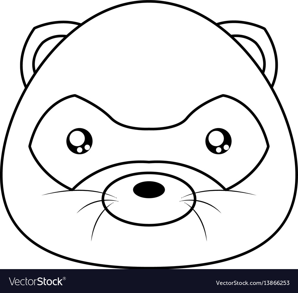 Opossum Drawing Face Royalty Free Vector Image