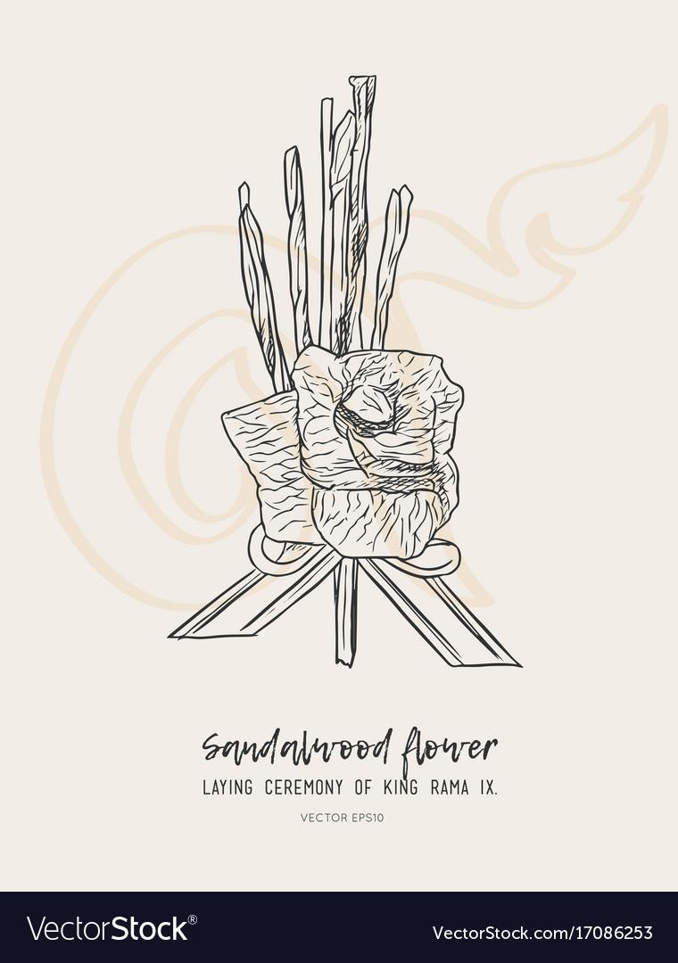 Sandalwood flower for king sketch