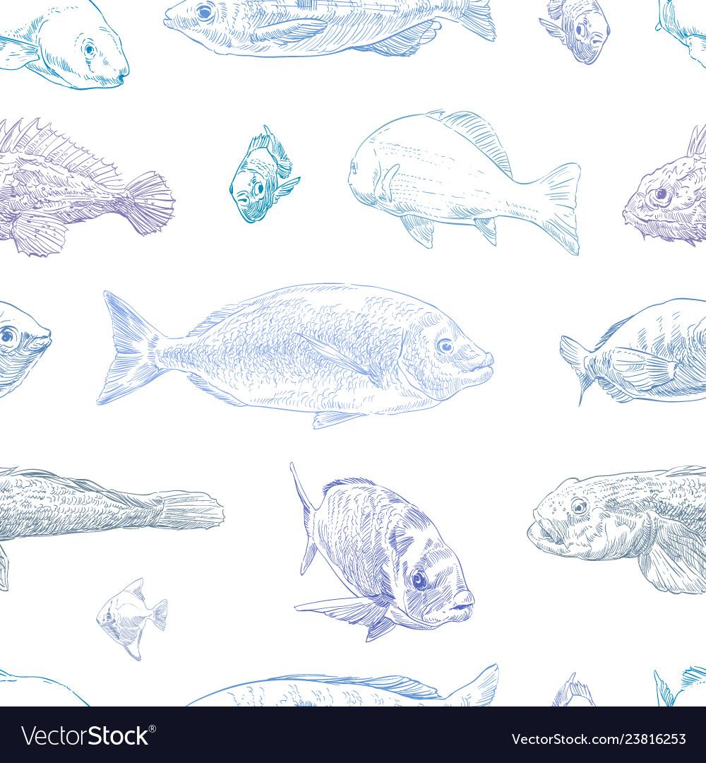 Seamless hand drawn fish pattern backgrounds mari