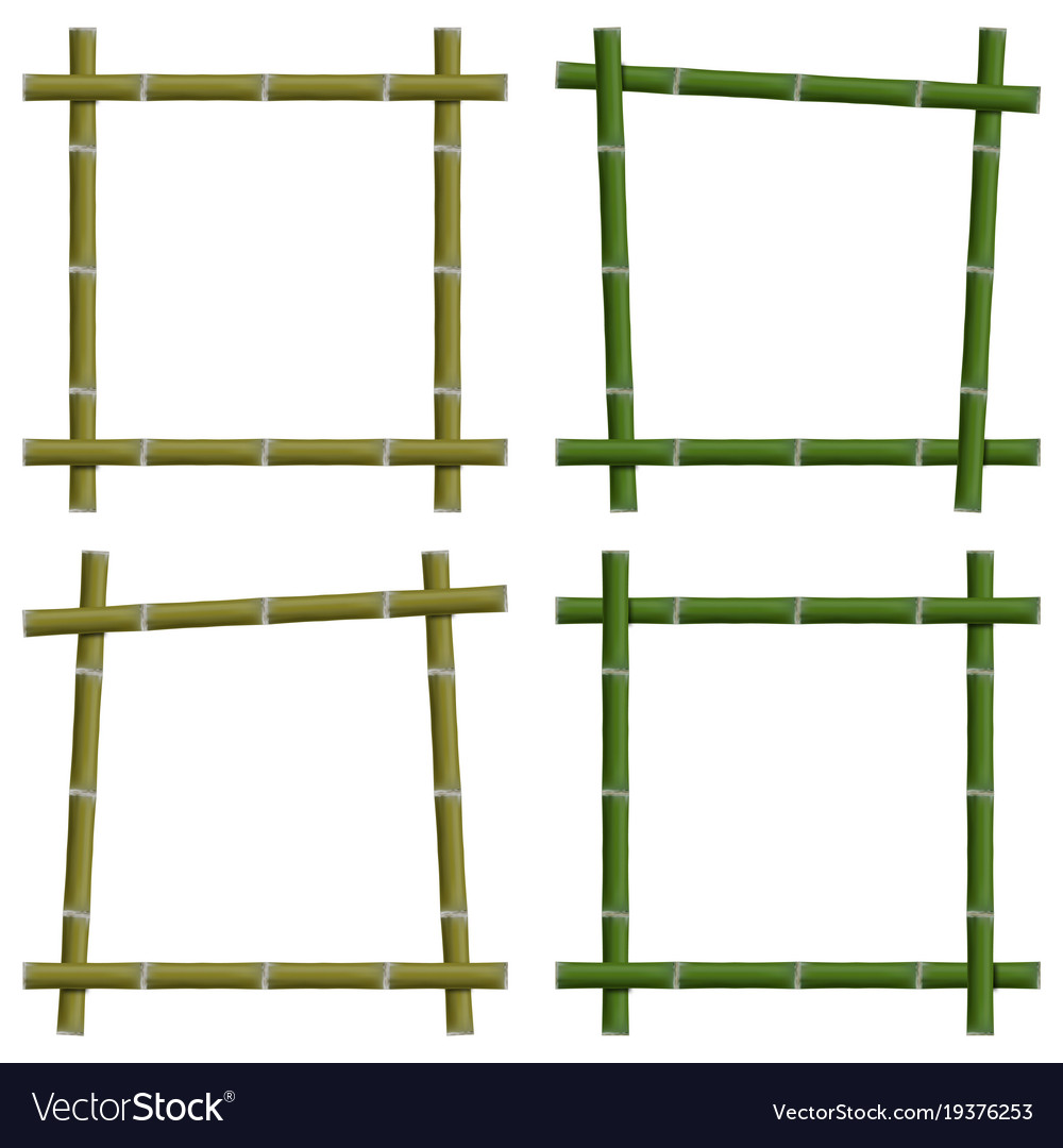 Set empty frames of bamboo stalks vector image
