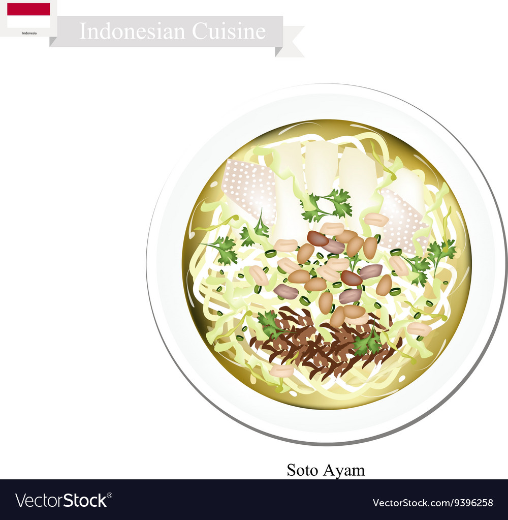 Soto Ayam or Indonesian Rice Noodle Soup vector image
