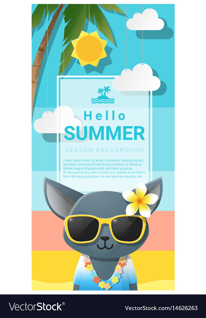 Hello summer background with cat