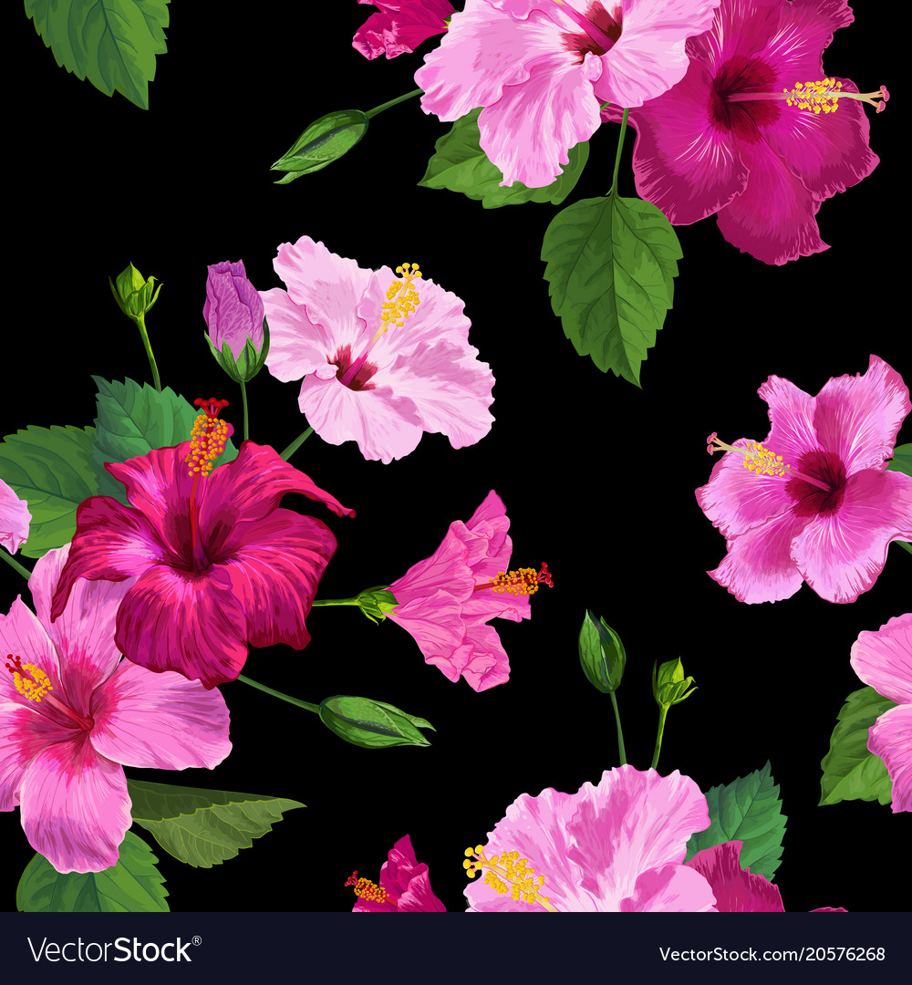 Tropical Hibiscus Flower Seamless Background Vector Image