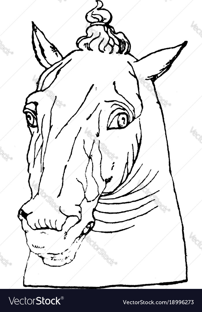 Antique Horse Head Is Natural Pattern In This Vector Image