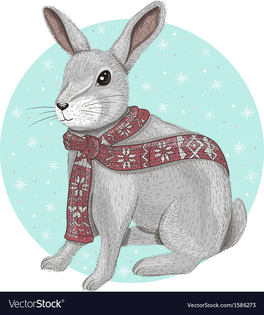 Cute rabbit with scarf winter background vector image