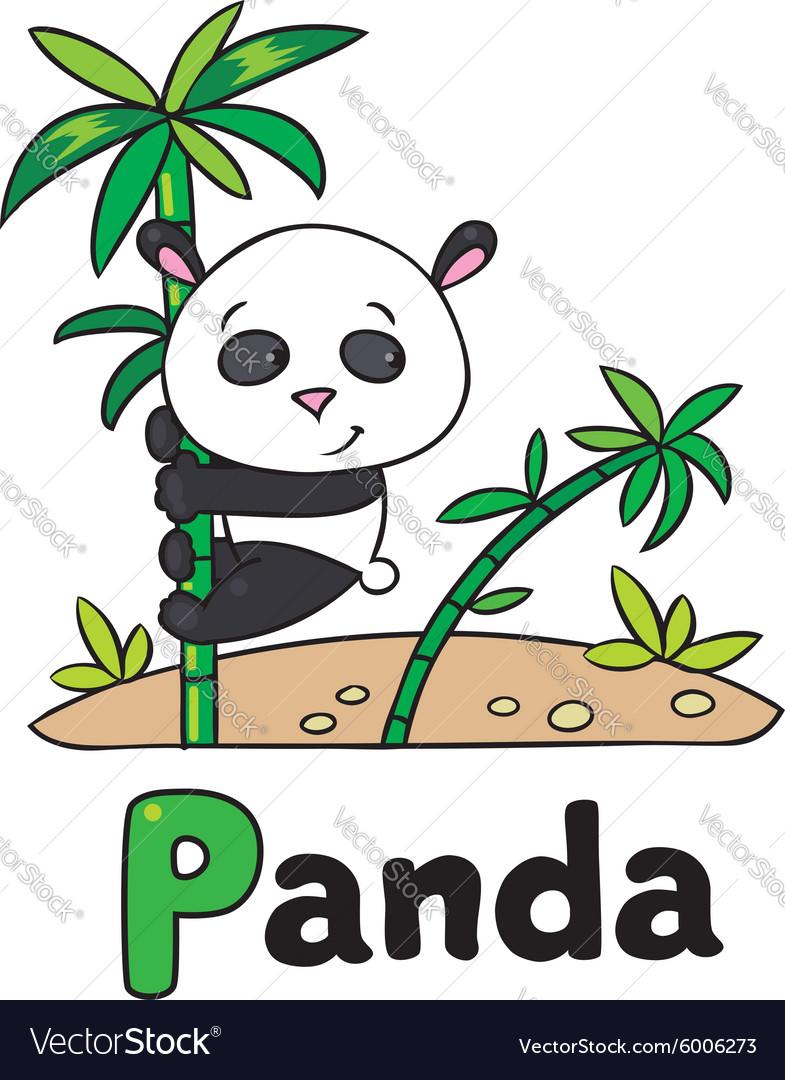 Little panda on bamboo for ABC Alphabet P