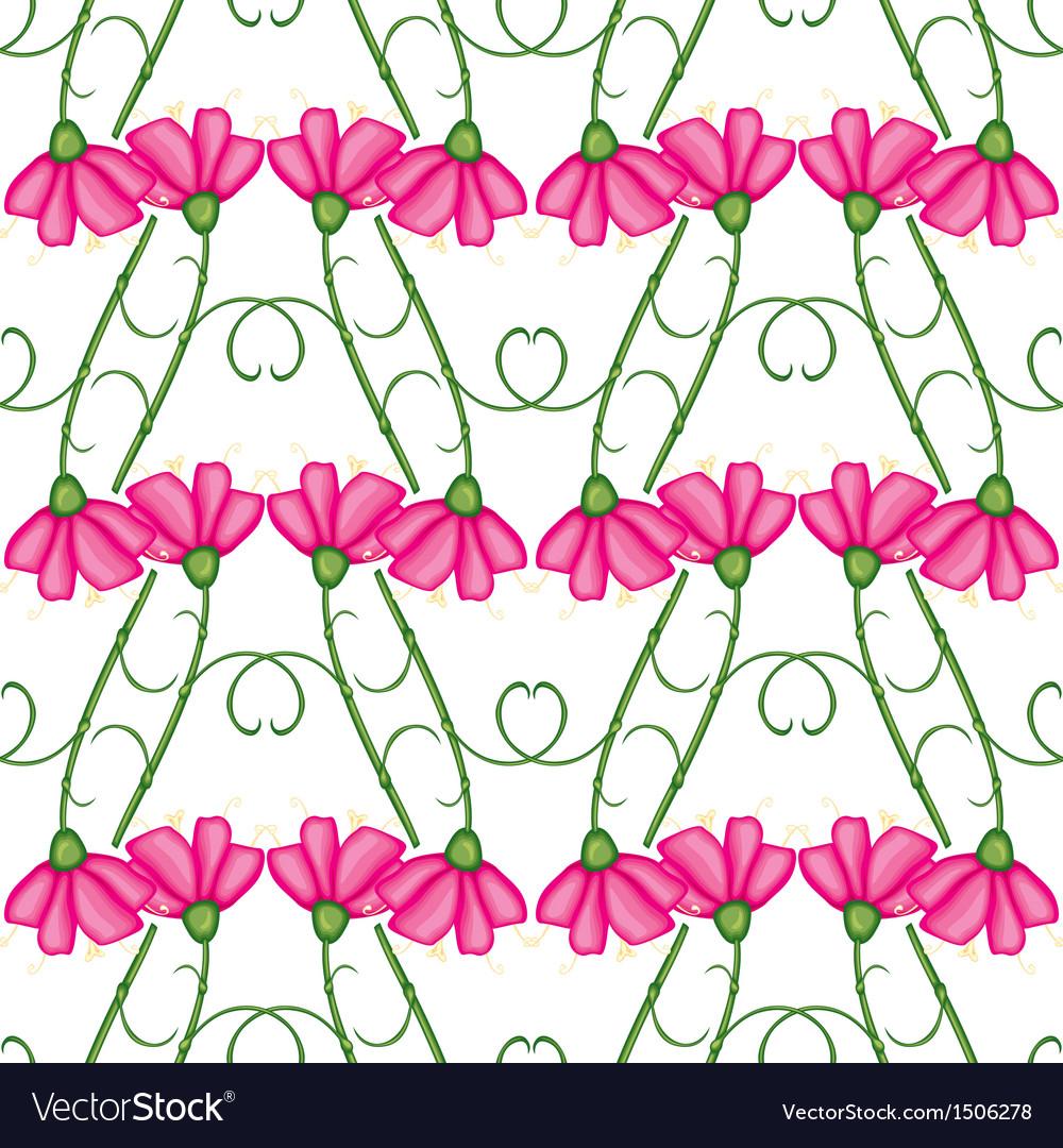 Carnation pattern