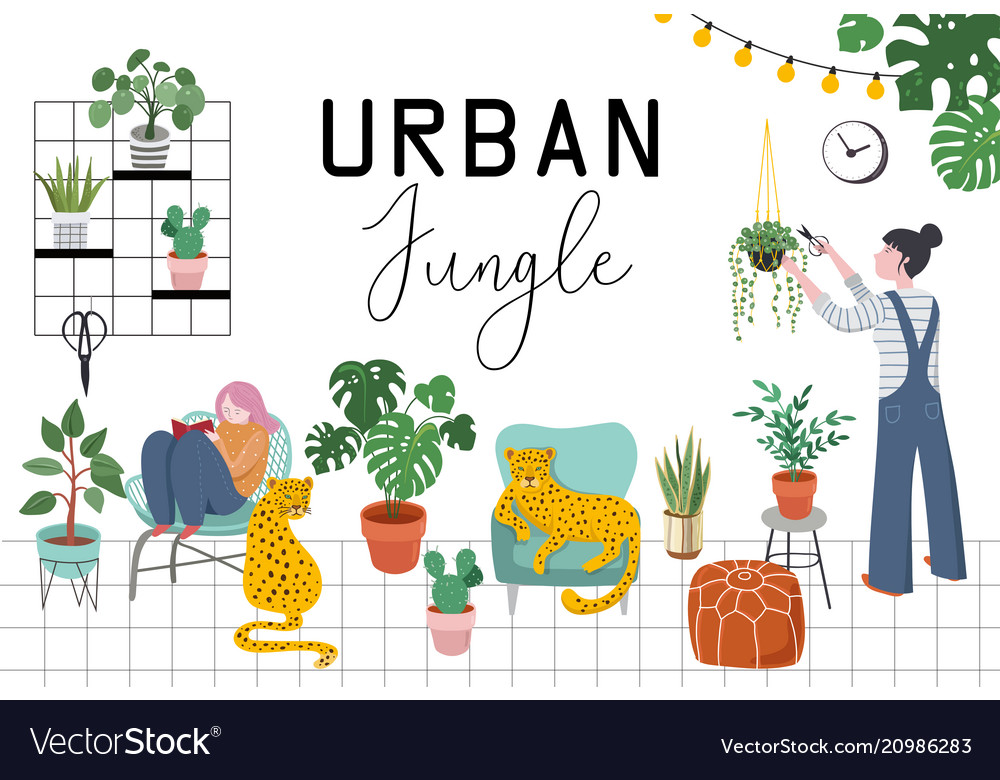 Urban Jungle Trendy Home Decor With Plants Vector Image