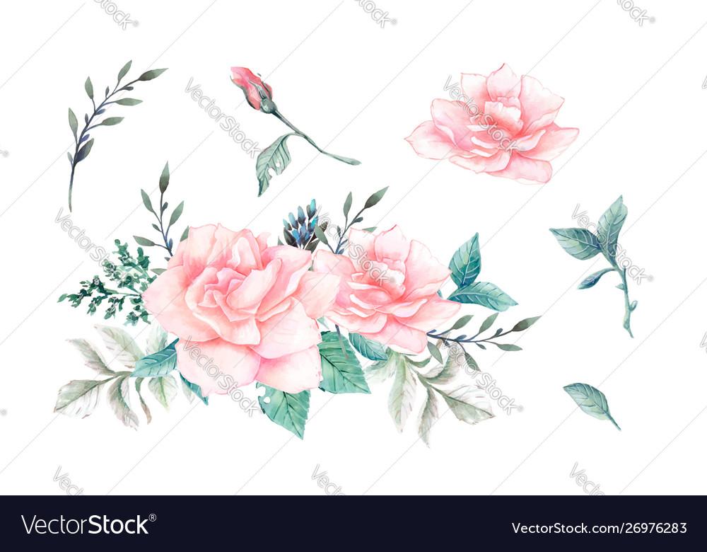 Watercolor pink roses vintage design set