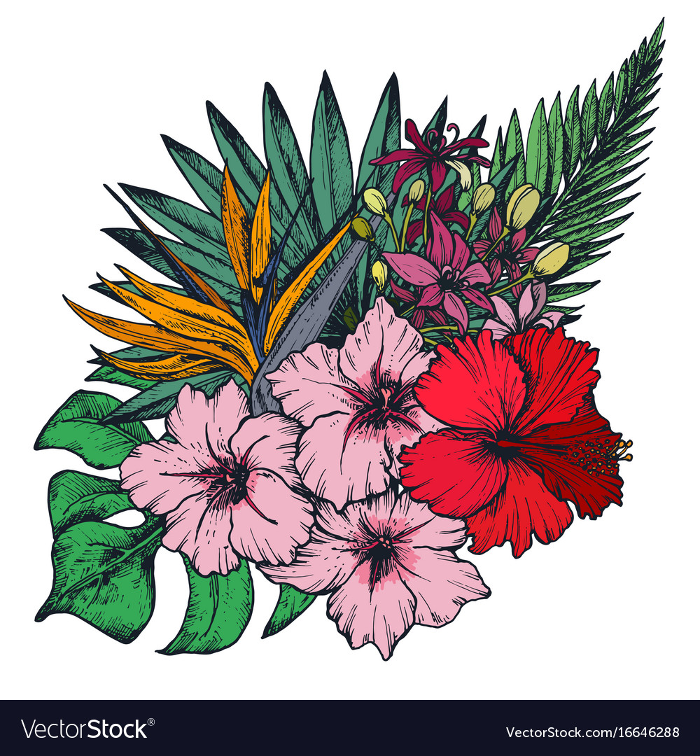 Composition of hand drawn tropical flowers