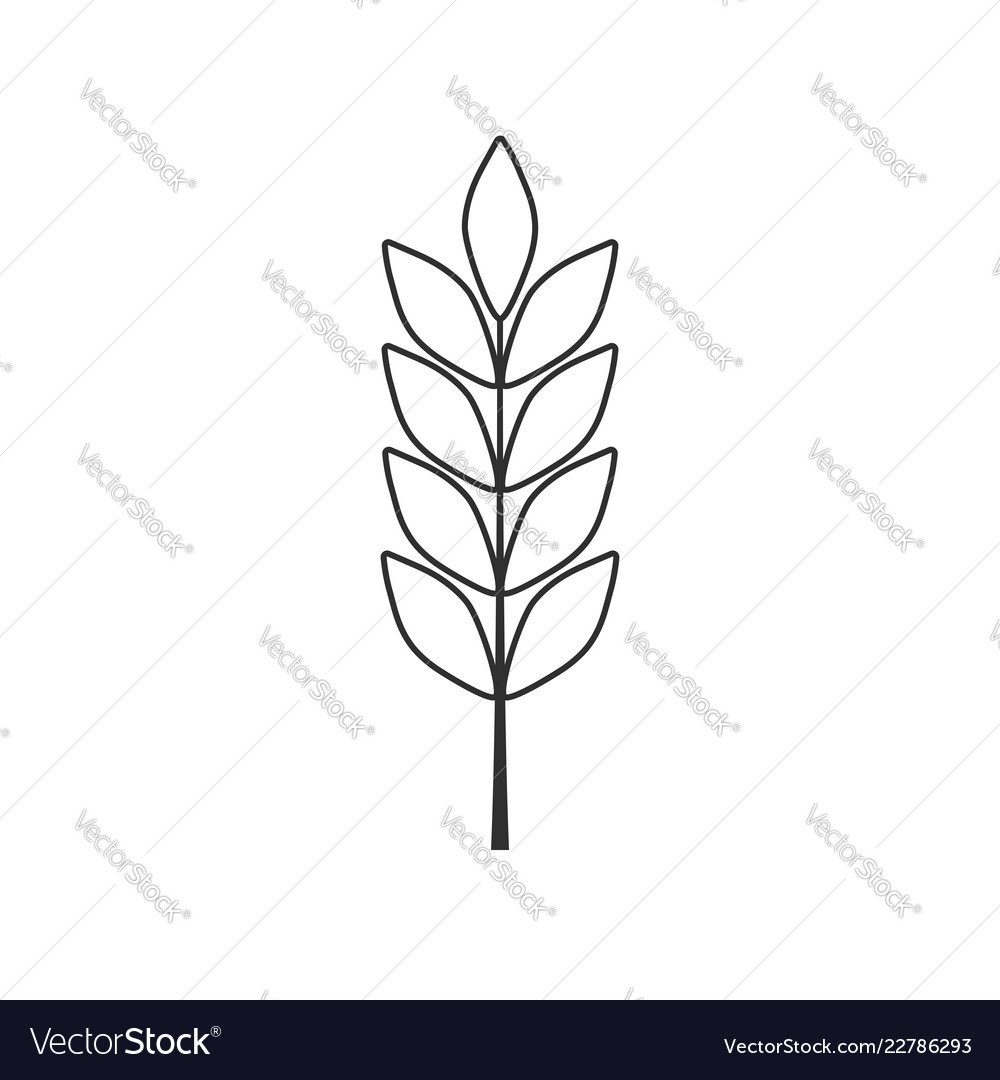 Barley or wheat icon in black flat outline design
