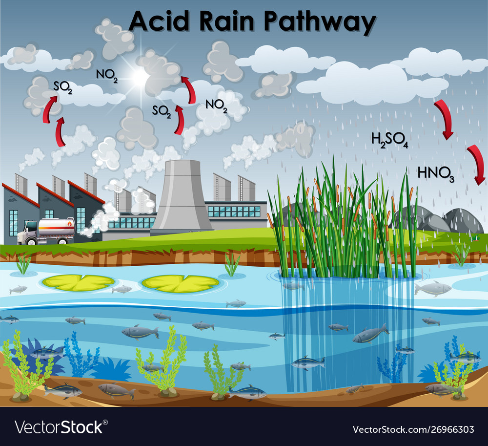 Acid Rain Pathway Diagram With Water And Factory Vector Image