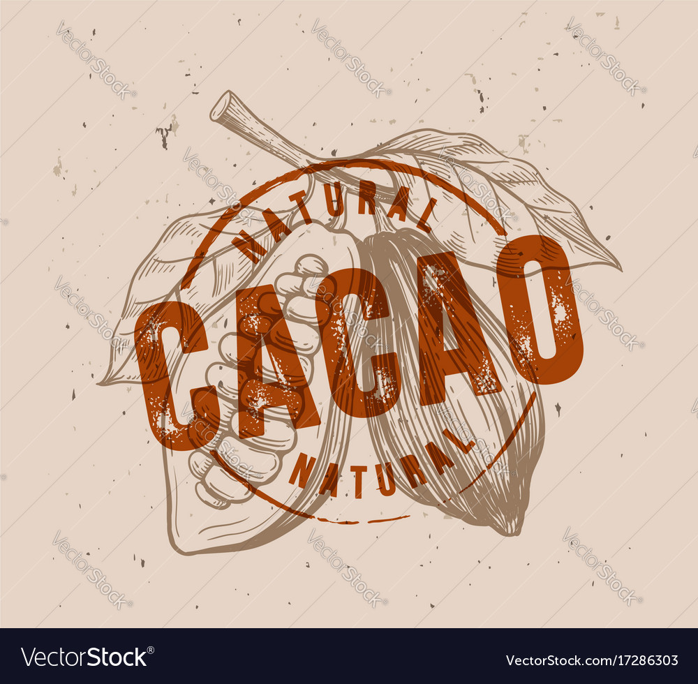 Chocolate cocoa beans