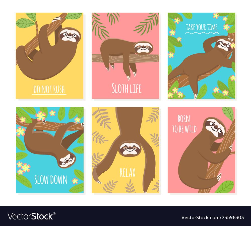 Sloth card cute slumber animal sleepy lazy