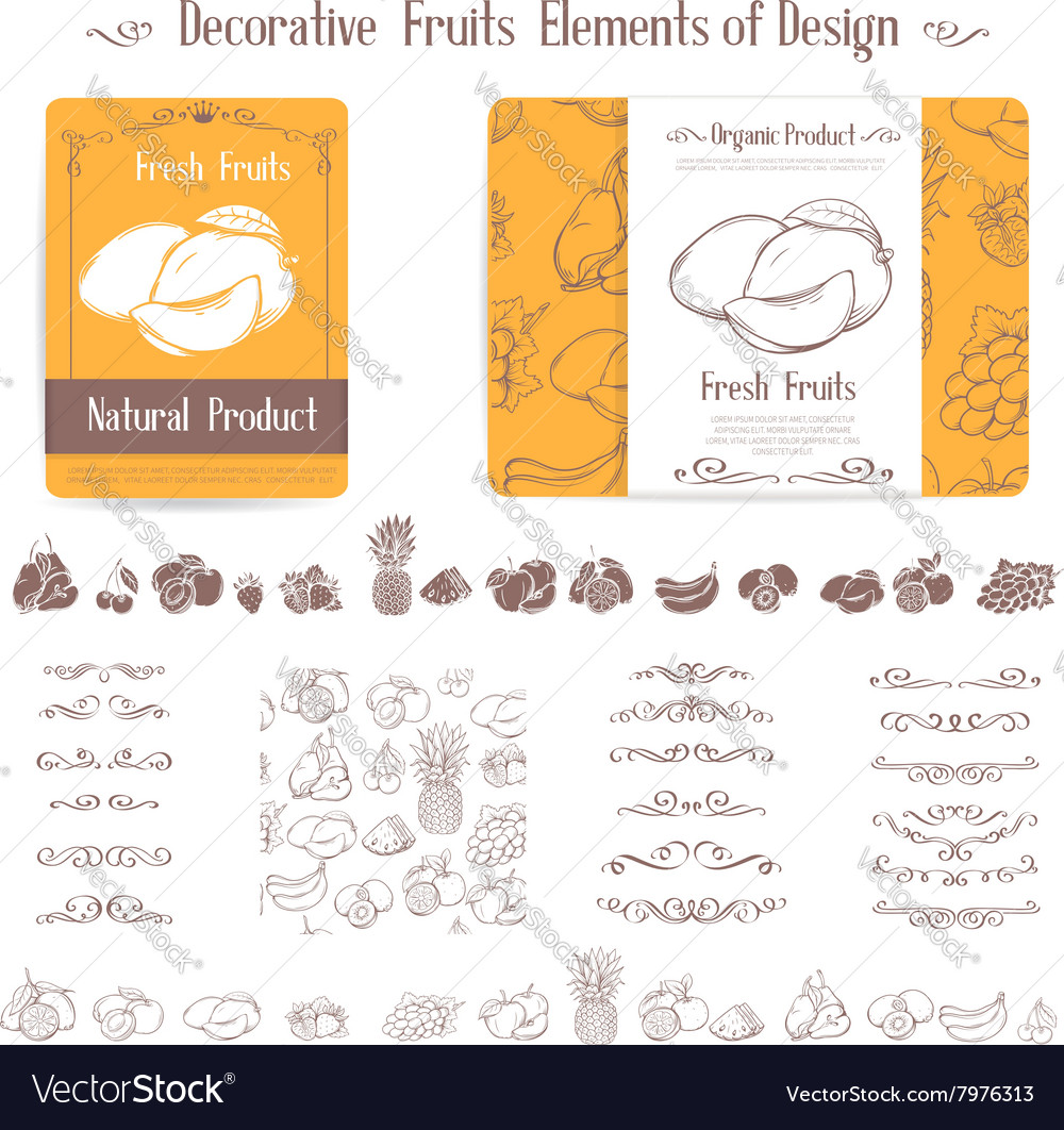 Set of decorative elements of fruits and swirl vector image