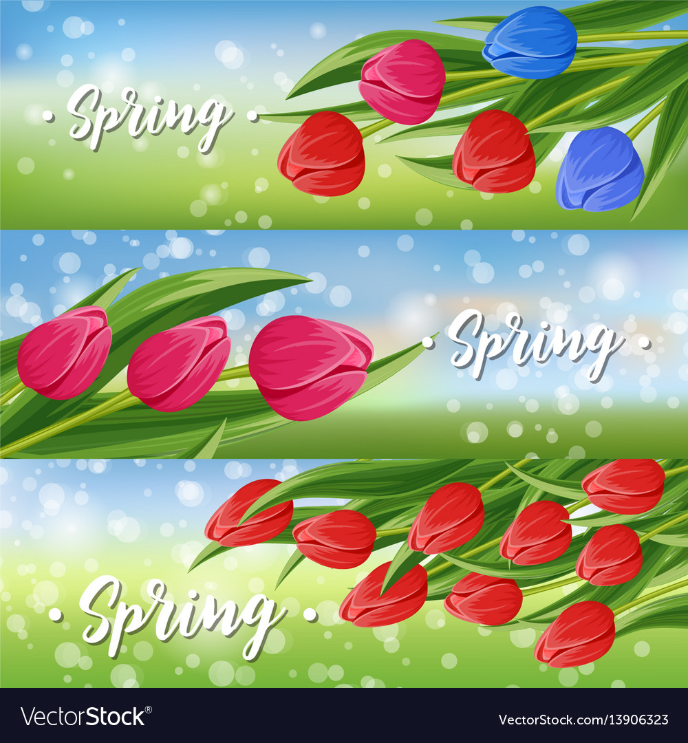 Spring greeting card set with blooming tulip