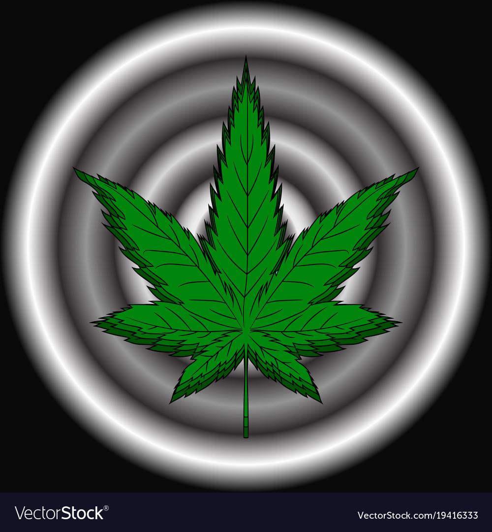 Hemp leaf dependence on marijuana