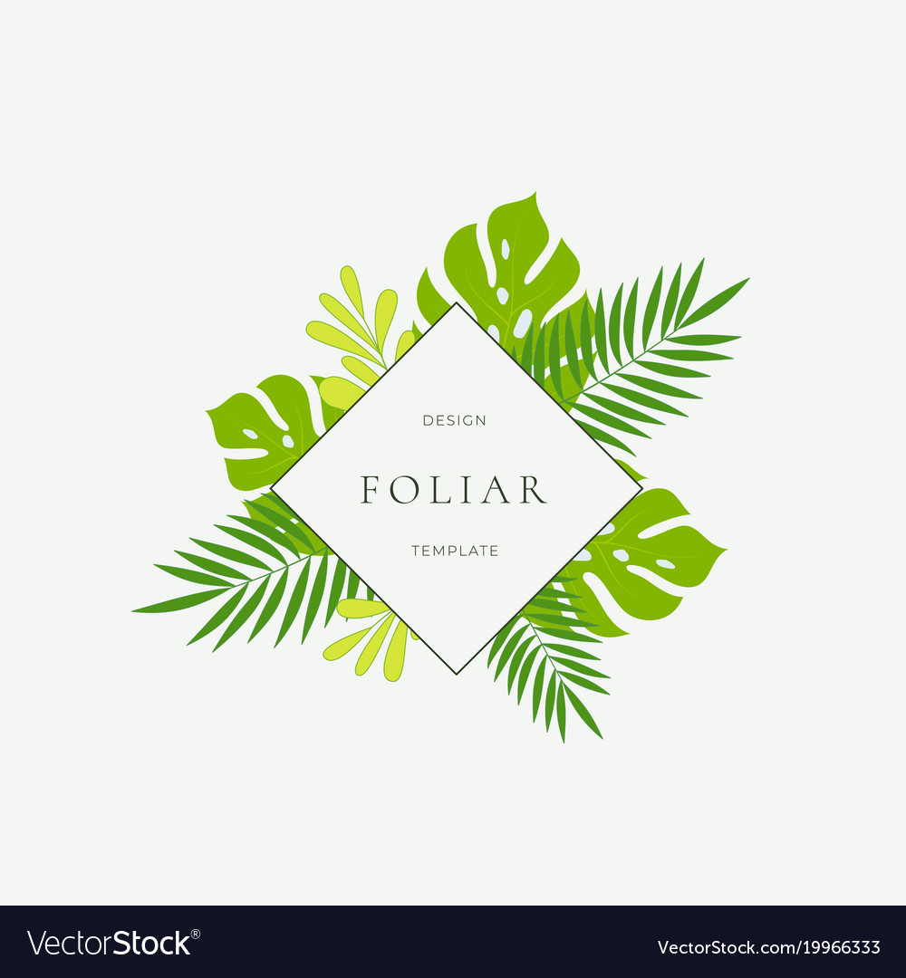 Tropical Leaves Fashion Sign Card Or Logo Vector Image These tropical leaves are customizable and available in all plant varieties. vectorstock