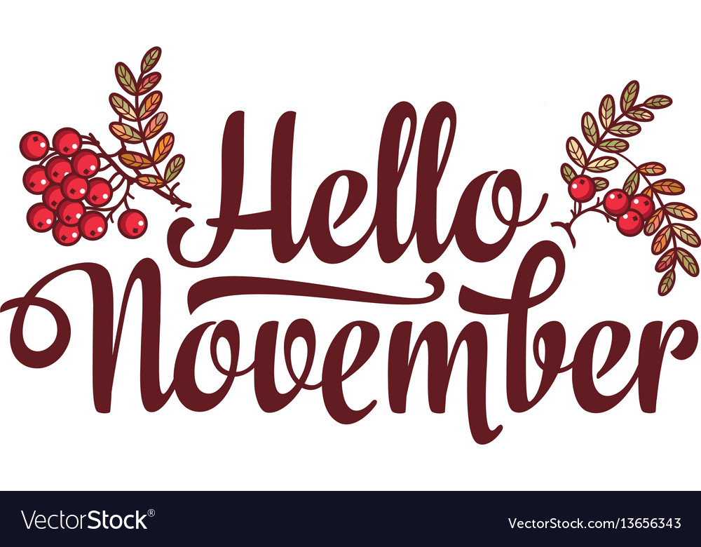 Hello november lettering composition flyer or vector image