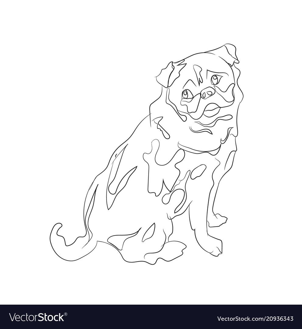Pug sitting lines