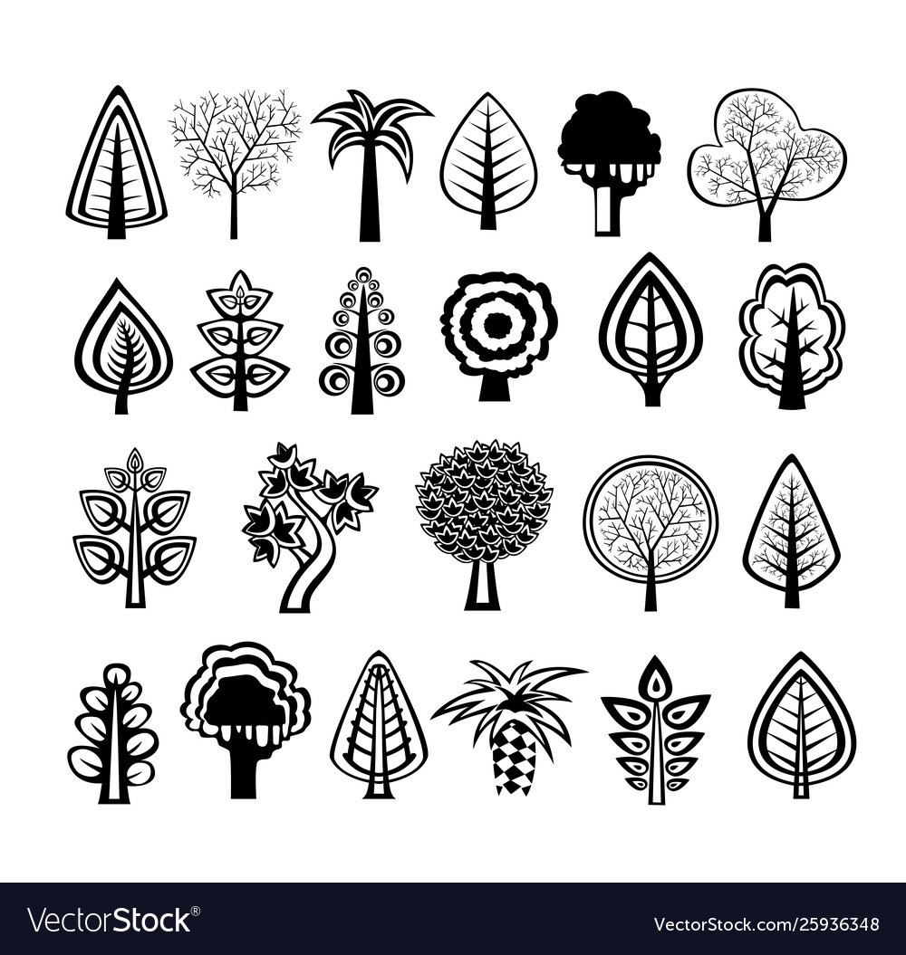 Silhouettes trees nature