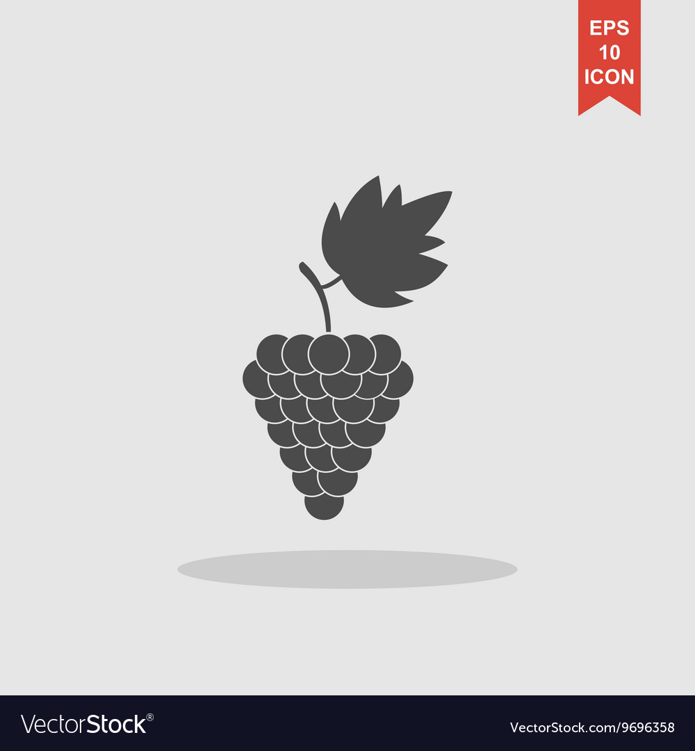 Grapes icon Flat design style vector image