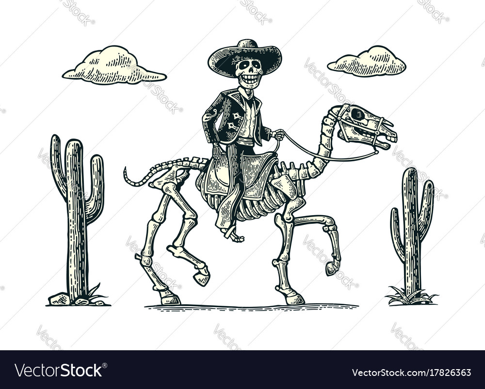 Rider in mexican man national costumes