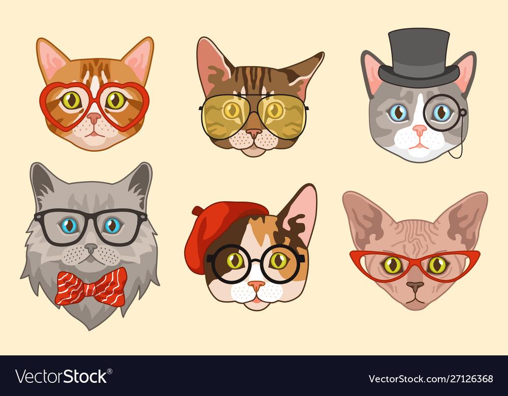 Cat heads cute funny cats avatar muzzles