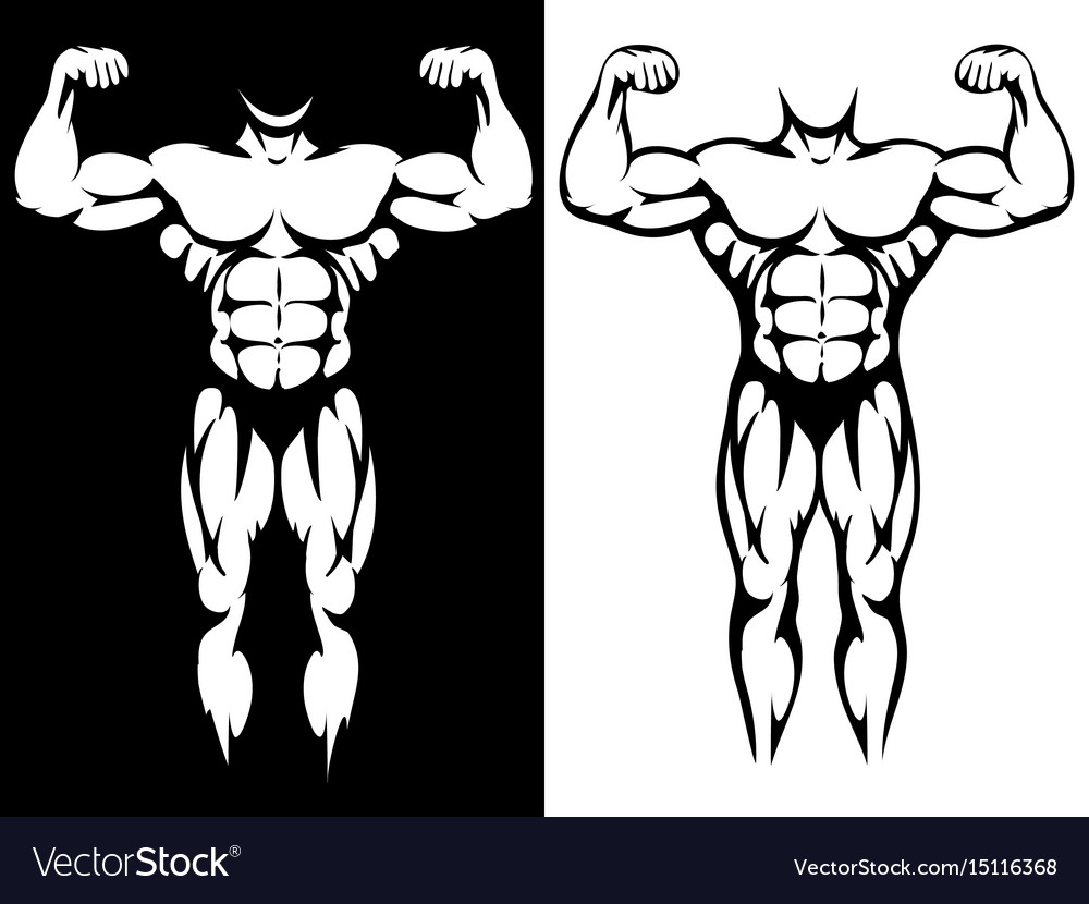 Male athletic body and muscules silhouettes