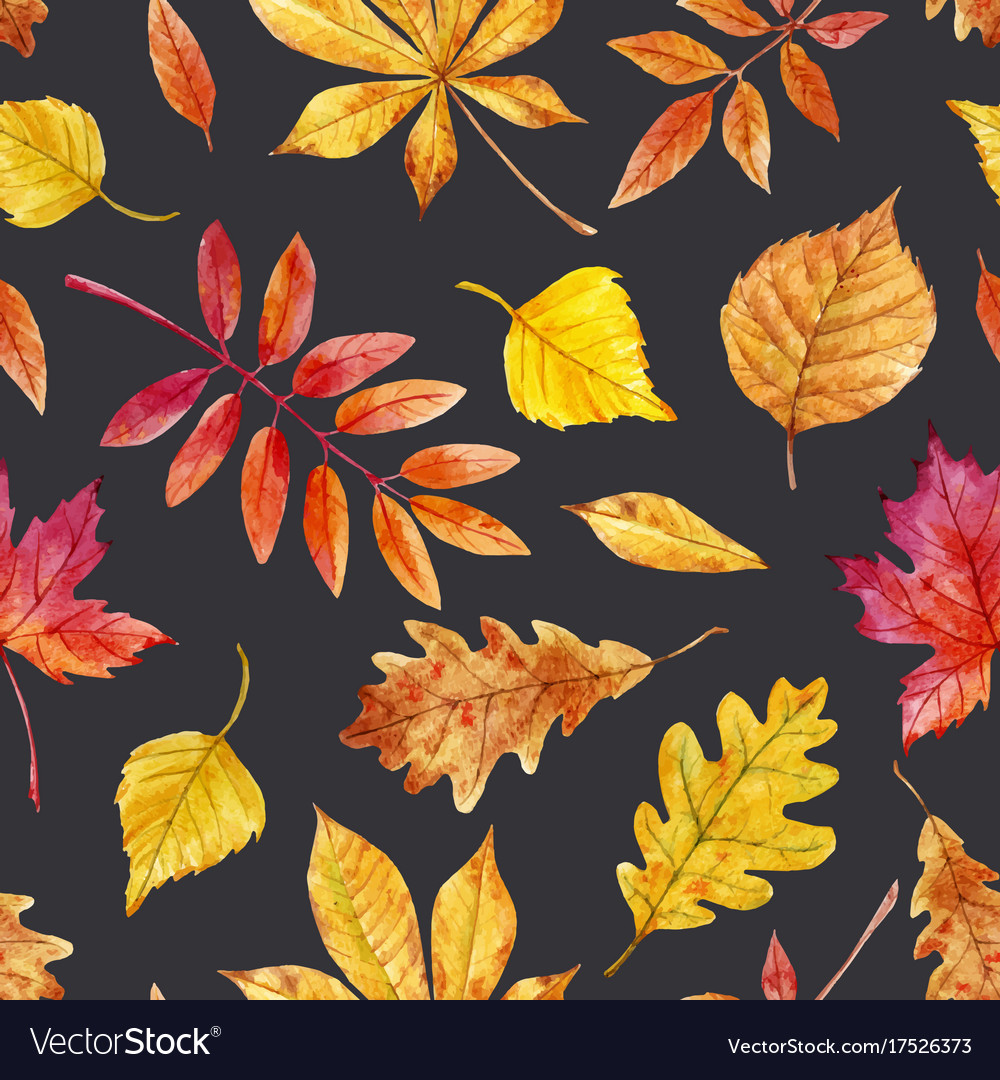 watercolor autumn leaves pattern royalty free vector image