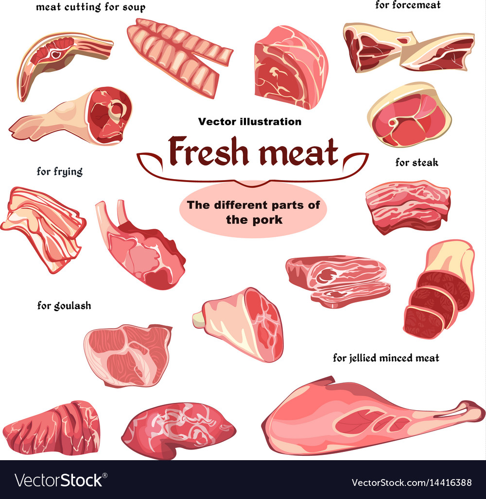 Natural cutting pork meat parts set Royalty Free Vector