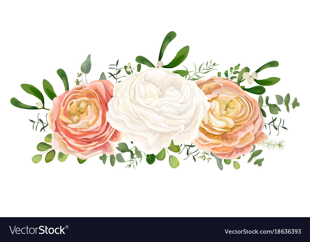 Floral bouquet with white pink peach ranunculus vector image mightylinksfo