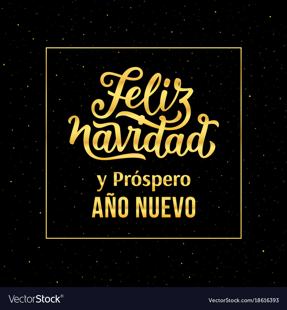 merry christmas and happy new year in spanish vector image