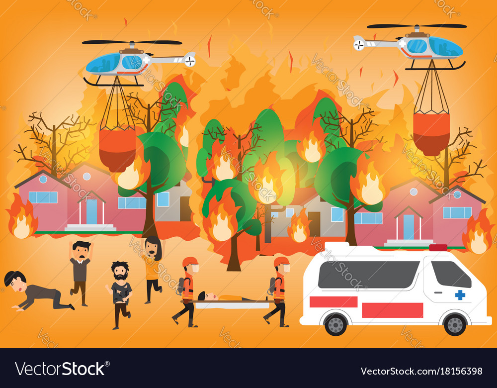 Forest fire infographics burning forest trees in