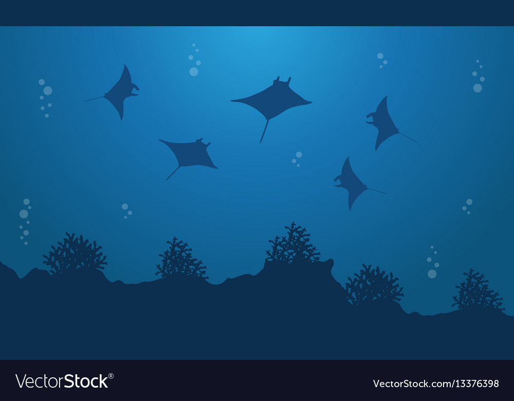 silhouette of stingray underwater landscape vector image