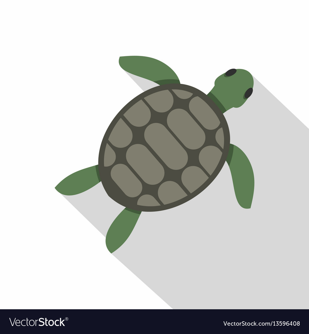 green sea turtle icon flat style royalty free vector image rh vectorstock com Sea Turtle Silhouette Sea Turtle Line Drawing