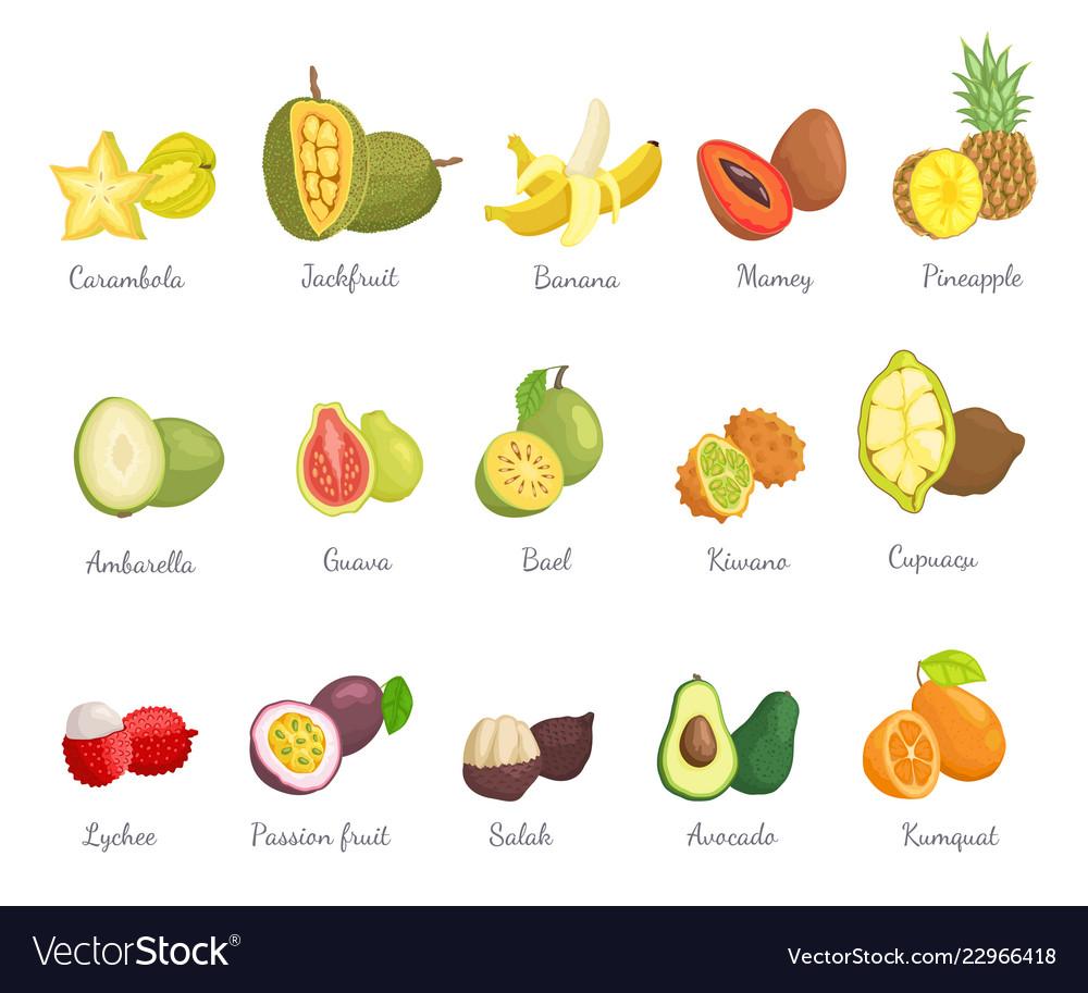 Lychee and carambola avocado set names