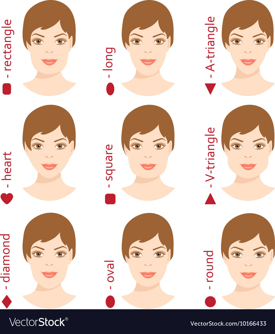 Surprising Set Of Different Woman Face Shapes 5 Royalty Free Vector Schematic Wiring Diagrams Amerangerunnerswayorg