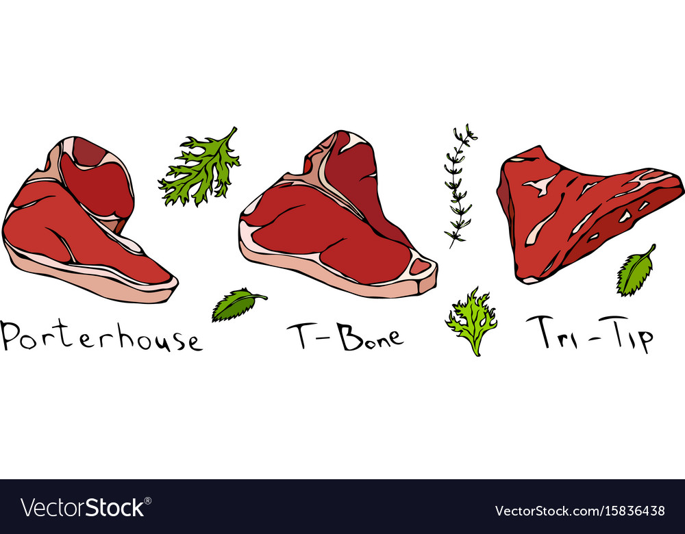 Set of hand drawn steaks porterhouse t-bone vector image