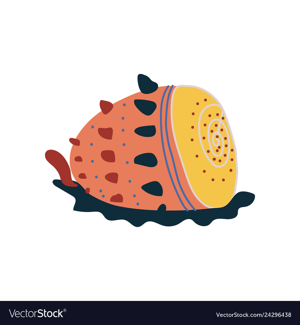 Tropical shell underwater colorful sea creature