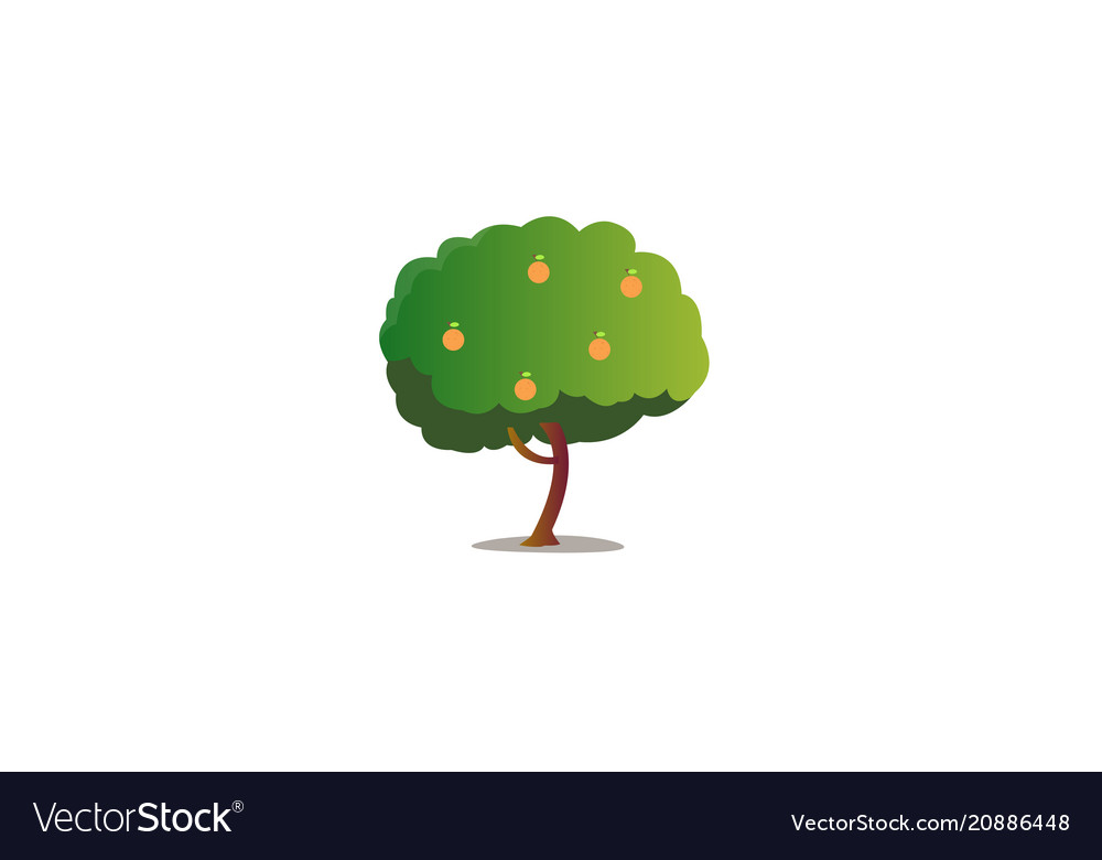 Cartoon orange tree with isolated white